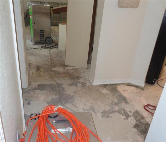 Stormwater Soaked Laminated Flooring in Coral Gables Before