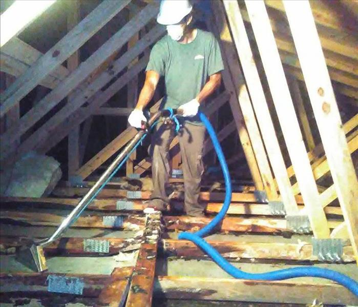 Drying Out an Attic in Key Largo