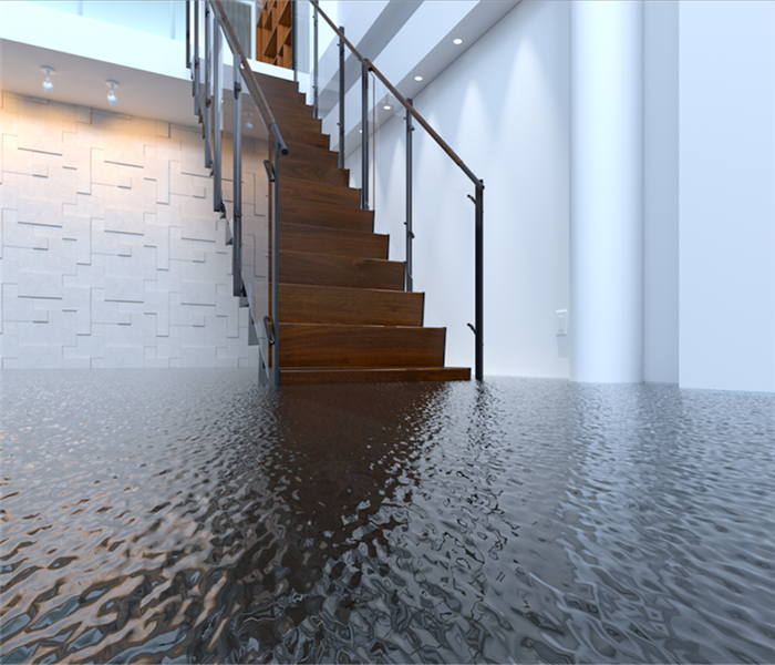 Water Damage Use SERVPRO to Deal With All Water Damage Issues in Your Coral Gables Home