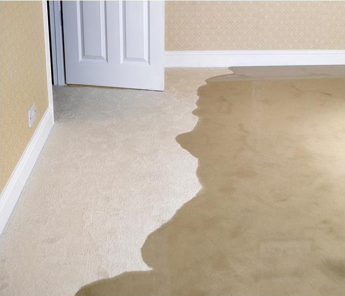Water Damage Water Damage Detection And Monitoring In Key Biscayne