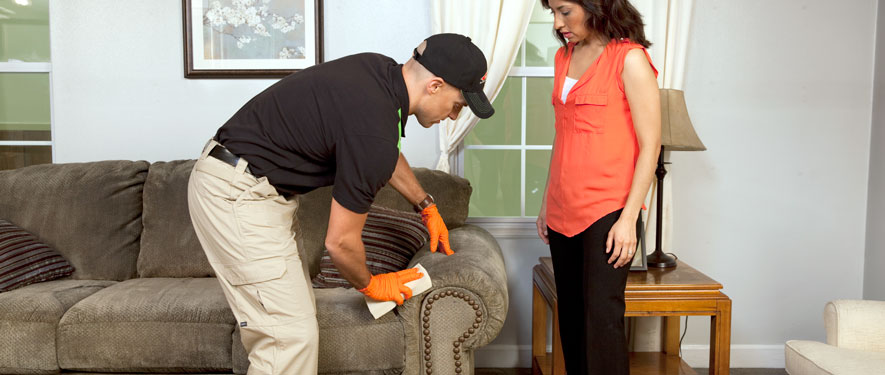 South Miami, FL carpet upholstery cleaning